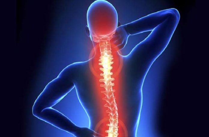 Three new genes associated with chronic back pain identified, may help in development of new therapies