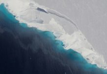 Gigantic cavity in Antarctic glacier signals rapid decay