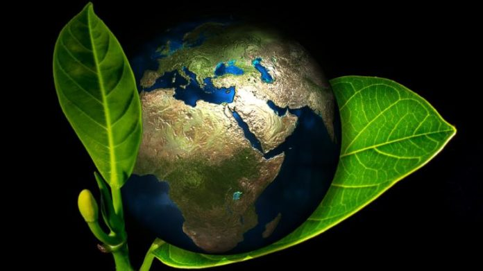 India and China lead the way in increasing Earth's green cover NASA report